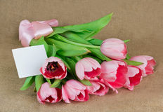 A bouquet of pink tulips with satin ribbon and the postcard Royalty Free Stock Photography