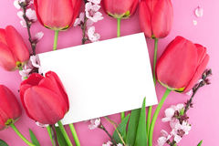 Bouquet of pink tulips and spring flowers on pink background Stock Images