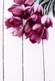 Bouquet of pink tulips, tinted Royalty Free Stock Images