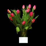 Bouquet of pink tulips in a vase Royalty Free Stock Image