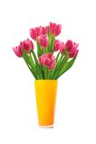 Bouquet of pink tulips in vase isolated on white Royalty Free Stock Photos