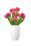 Bouquet of pink tulips in vase isolated on white Royalty Free Stock Photography