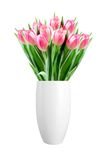 Bouquet of pink tulips in vase isolated on white Royalty Free Stock Image