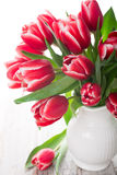 Bouquet of pink tulips in vase on the white background Stock Image
