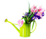 Bouquet of pink tulips, violet iris and muscari Stock Photos