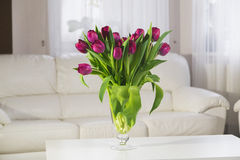 Bouquet of pink tulips on a white background. Bouquet of pink tulips in a glass vase on a white background Stock Images