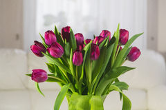 Bouquet of pink tulips on a white background. Bouquet of pink tulips in an interior on a white background Royalty Free Stock Photography