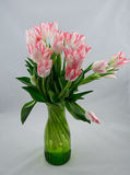 Bouquet of pink tulips on white background Stock Photo