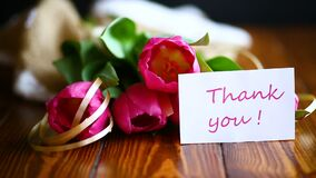 Bouquet of pink tulips. On a wooden table stock footage