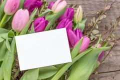 Bouquet of pink and violet tulips. Beautiful bouquet of pink and violet tulips with a white copy space on a wooden background Stock Photography