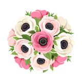 Bouquet of pink and white anemone flowers. Vector illustration. Royalty Free Stock Photos