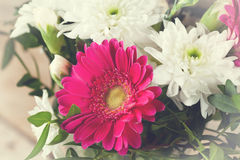 Bouquet Royalty Free Stock Image