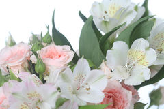 Bouquet of pink and white flowers Stock Images