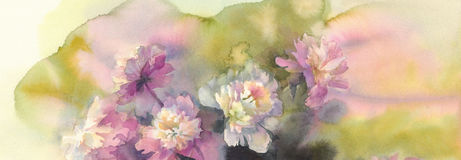 Bouquet of pink and white peonies watercolor Stock Image