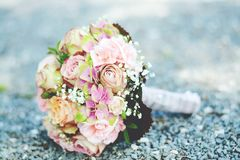 Bouquet of Pink-and-white Petaled Flowers Stock Photos