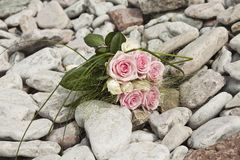 Bouquet of pink and white roses Royalty Free Stock Photography