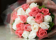 Bouquet pink and white roses  flower Stock Image
