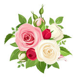 Bouquet of pink and white roses. Vector illustration. Stock Photo