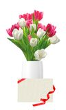 Bouquet of pink and white tulips in vase and card isolated Stock Photography