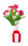Bouquet of pink and white tulips in vase and gift box isolated Royalty Free Stock Photography