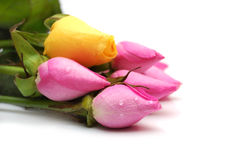 Bouquet of pink and yellow roses Stock Images