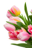 Bouquet of pink and yellow  tulip flowers Stock Photos