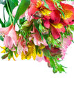 Bouquet of pink, yellow and white lilies. stock photos