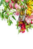 Bouquet of pink, yellow and white lilies. Royalty Free Stock Image
