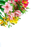 Bouquet of pink, yellow and white lilies. royalty free stock images