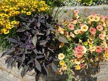 Bouquet plante fleur