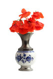 Bouquet of poppies in porcelain vase Stock Photography