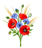 Bouquet of poppy flowers and cornflowers. Vector illustration. Royalty Free Stock Photos