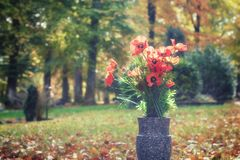 Bouquet of poppy flowers in a sunny autumn cemetery. Peace, tranquility, remembrance concept Stock Photography