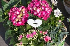 bouquet pour le jour de mères Images libres de droits