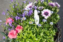 bouquet pour le jour de mères Image stock