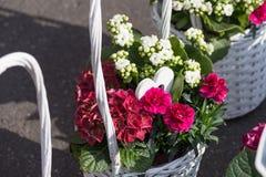 bouquet pour le jour de mères Image libre de droits