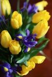Bouquet pour les vacances Photos libres de droits