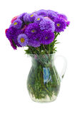 Bouquet of purple aster flowers Royalty Free Stock Images