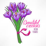 Bouquet of purple crocuses Royalty Free Stock Photo