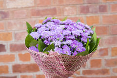 Bouquet of purple flowers in vintage brown brick as background (Selective focus) Royalty Free Stock Photo
