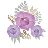 Bouquet of purple flowers on white backgroun Royalty Free Stock Photography