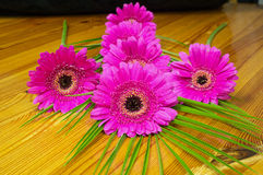 Bouquet of purple gerber on a wooden table Royalty Free Stock Photography