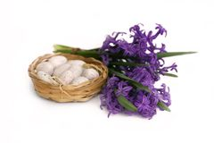 Bouquet of purple hyacinth Royalty Free Stock Photos
