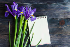 Bouquet of purple irises on a wooden background Stock Image