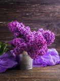 Lilac flowers in decorative tin bucket royalty free stock photo