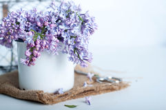 Bouquet of purple lilac spring flowers Stock Photo