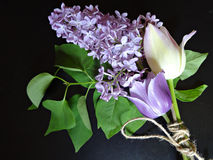 Bouquet of purple lilacs and tulips on a dark background Stock Photo