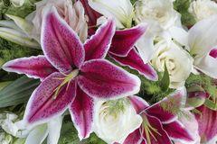 Purple lilies. Bouquet of the purple lilies and white flowers royalty free stock images