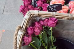 Bouquet of purple roses at florist Royalty Free Stock Photos