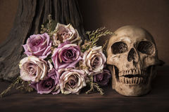 Bouquet purple roses with human skull Royalty Free Stock Image